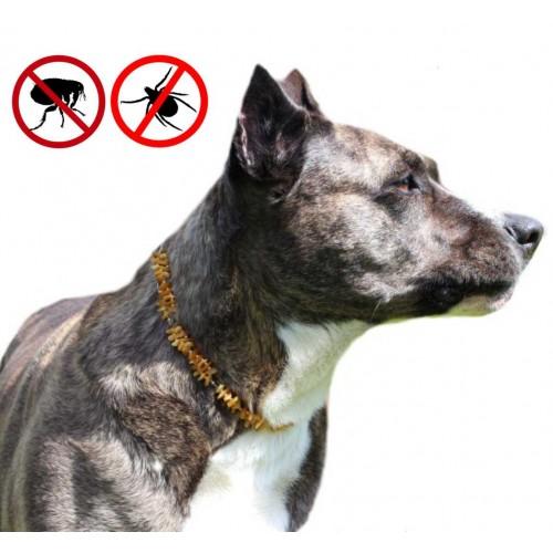Dzintara kakla siksniņa suņiem ērču un blusu atbaidīšania